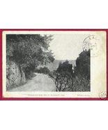 MADISON INDIANA Hills Road Flora Photo UDB 1908 - $5.00