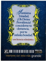 Oraciones a la Divina Providencia image 2