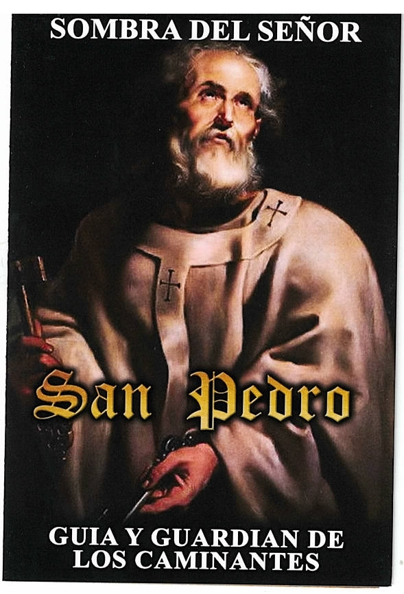 Sombra del senor san pedro 20.0122 001