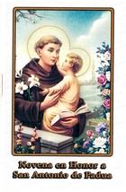 Novena, en Honor a San Antonio de Padua - L330.0029