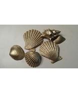 Unique Painted Seashells - $8.00