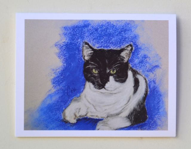 Black and White Cat Art Note Cards Solomon