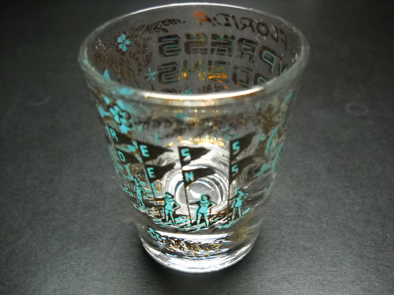 Florida Cypress Gardens Shot Glass Clear Glass with Illustrations Blues & Golds