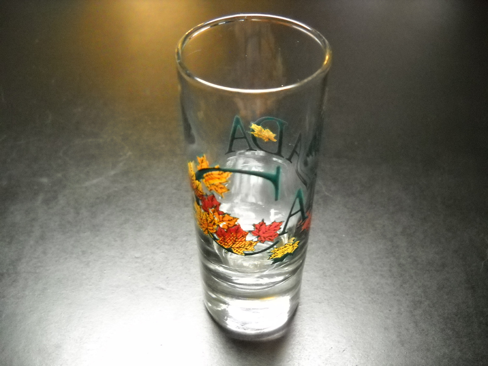 Canada Shot Glass Tall Size Black Print Canada with Maple Fall Color Foliage