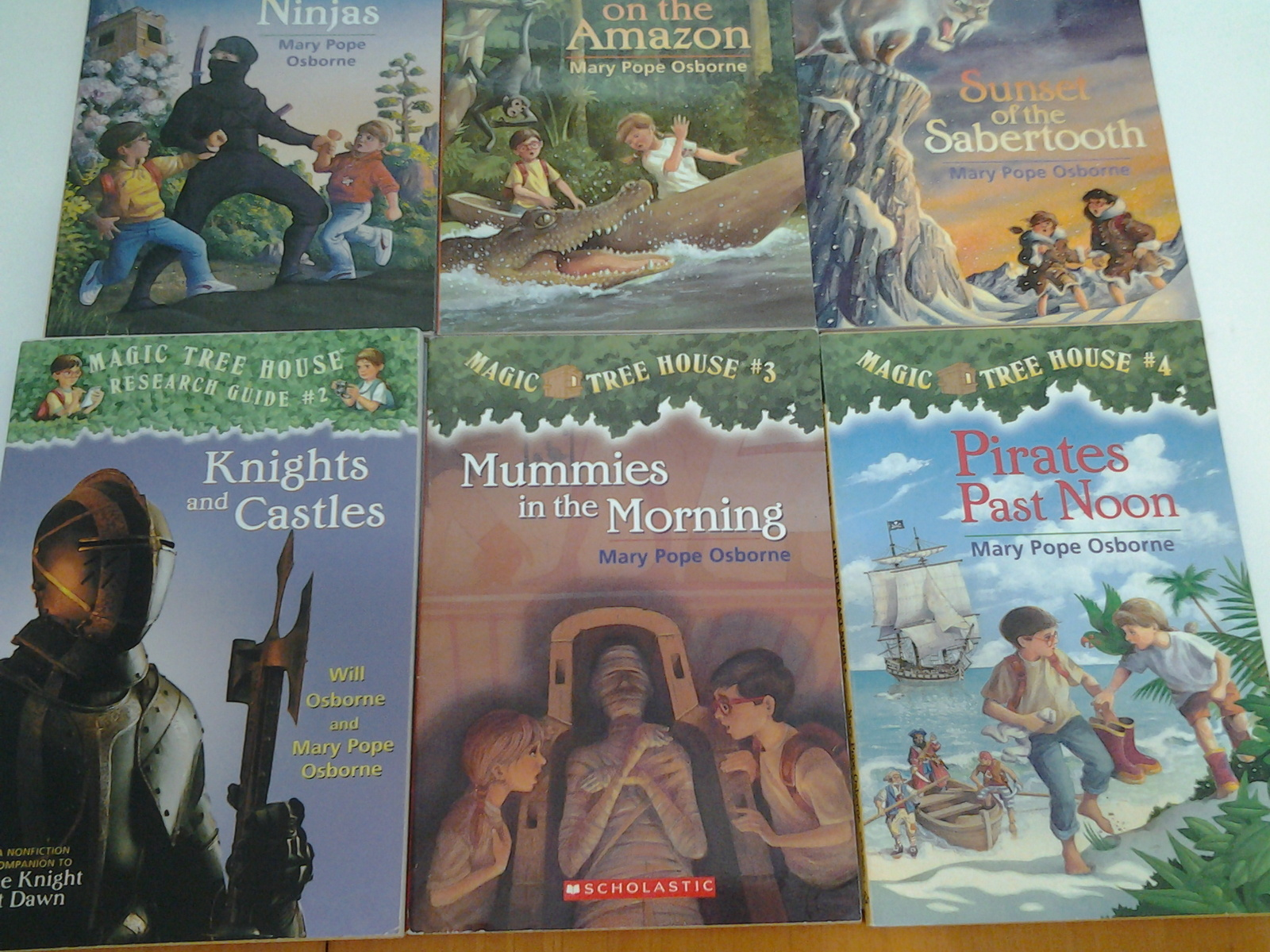 Lot of 13 Magic Tree House Paperback Books 1-4, 6-10, 13, 14, 17, 18 Series Set