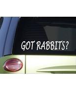 "Got rabbits *H978* 8"" Sticker decal cage food house pen cedar chips beagle vest - £2.90 GBP"