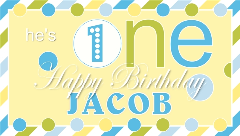 Baby's First Birthday -Personalized- Vinyl Birthday Banner Party Decoration