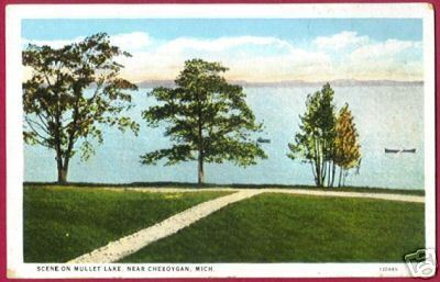 Primary image for MULLET LAKE Cheboygan Michigan Scene MI