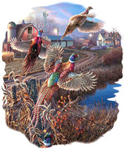 Wild Pheasants Cross Stitch Pattern***L@@K*** - $4.95