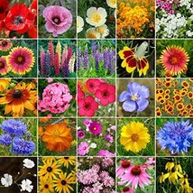 Non GMO Bulk Midwest Wildflower Seed Mix 25 Species of Wildflower Seeds ... - $247.50