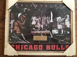 Chicago Bulls champions poster 1993 3 Peat Crying Jordan New Framed - $28.49