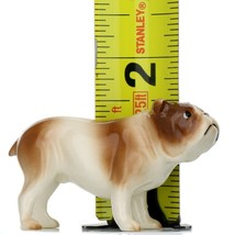 Hagen Renaker Miniature Dog Bulldog Brown and White Ceramic Figurine image 2