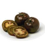 10 Fresh Seeds - Tomato Kumato Yummy Sweet - Tangy Brown Delicious - $7.99