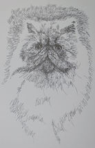 Persian Cat Art Print Lithograph #93 Stephen Kline adds your cats name free GIFT - $49.95