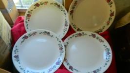 CORELLE GARDEN HOME DINNER PLATES 10.25 INCH x 4 FREE USA SHIPPING PLEAS... - $28.04