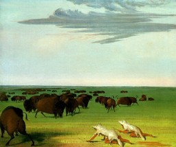 BUFFALO HUNT UNDER THE WOLF SKIN MASK AMERICAN INDIAN 1832 GEORGE CATLIN... - $10.96+