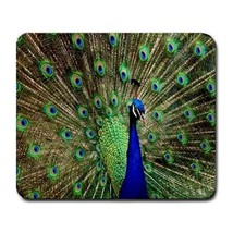 Mouse Pad Peacock Beautiful Green Feather Wild Animal In Nature Fantasy Game - $6.00