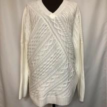 NEW DANA BUCHMAN Womens V-Neck Sweater, Chunky Pullover Size XL, Ivory, $48 - $38.70