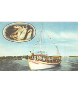 TARPON SPRINGS, Florida FL  ST NICHOLAS BOAT LINE~Deep Sea Fishing~Capt ... - $5.84