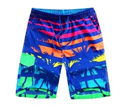 Hornet Park Multicolor Men's Beach Shorts Casual Sport Trunks Quick Dry Shorts - $19.54
