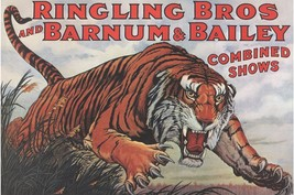 Barnum Bailey Ringling Circus Poster Snarling S... - $5.99