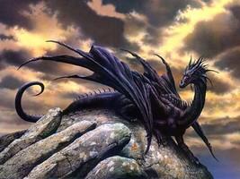 Black dragon thumb200