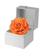 Christmas Gift-New Year's Gift-Gift for Her-Preserved Rose Gift Box-Rose... - $115.00