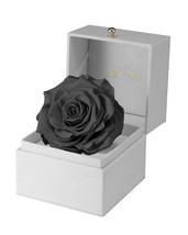 Holiday Gift-Gift For Him-Preserved Black Rose Gift Box-RoseStory - $95.00