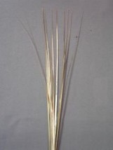 "12 Pieces Plain 21"" Onion Grass Spray Metallic Pick Decoration - gold - $7.91"