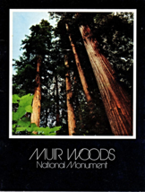 Muir Woods National Monument (Paperback) by Peter Jackson Holter (Author)  - $6.95