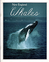 New England Whales By Howard Garrett & Candice Keays 1993 - $6.75