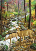 Deer Stream Cabin Cross Stitch Pattern***L@@K*** - $4.95