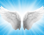 Angels-wings-blue_thumb155_crop