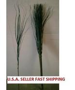 70 STEMS OF GREEN ONION GRASS WHOLESALE, WHOLESALE SILK FLOWERS, FREE SH... - $44.00