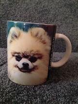 Pomeranian Mug Cup Dog Cute Fur Background Information Gloss Finish Coff... - $11.00
