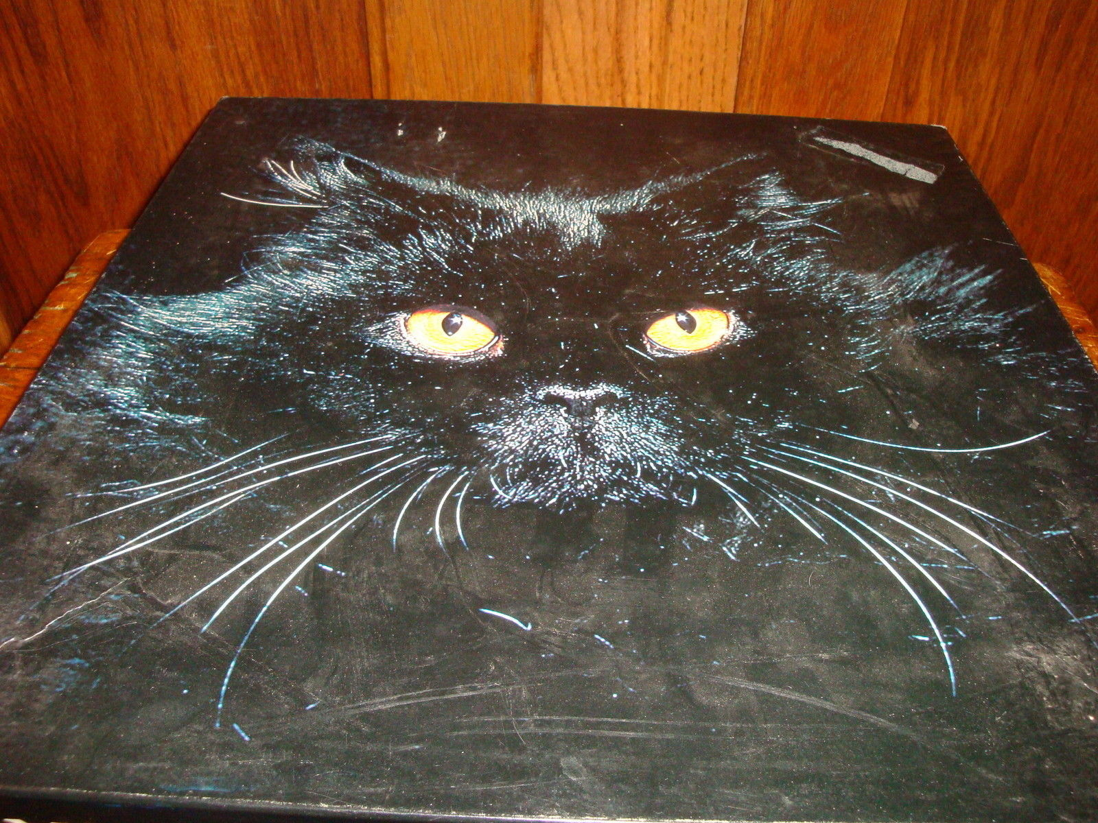 Springbok Puzzle Midnight Cat Over 500 and 12 similar items