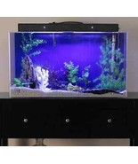60 Gallon Aquarium Saltwater Fresh Water Acrylic Clear Durable Exotic Fi... - $856.60