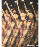 A CHORUS LINE Theater - A New York City Shakespeare Festival Producdtion... - $12.95