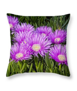Succulent Flowers, Throw Pillow, fine art, seat cushion, accent, ice plant - $41.99+