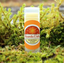 Pumpkin Spice Lip Balm, Probiotic, Organic- .15 Oz Oval Tube - $4.50