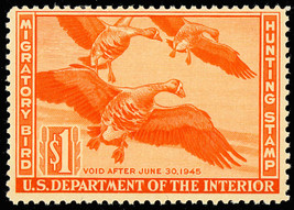 RW11 Mint $1 DUCK Stamp - VF OG NH Cat $140.00 --- Stuart Katz - $69.95
