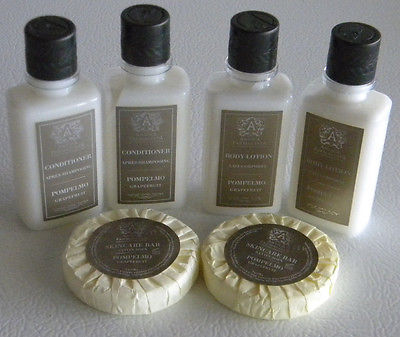 Primary image for LOT OF BATH BODY TRAVEL sz Grapefruit scented LOTIONs hair CONDITIONERS & SOAPS
