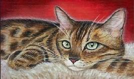 Cat Magnet #27 - $6.99