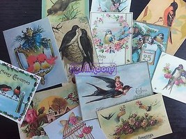 Lot of 13 Vintage BIRDS DIE CUTS for Card Makin... - $4.34