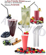 Perfect Smoothie Stainless Steel Straw Set, LON... - $8.50 - $14.50