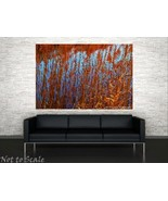 Fire Grass Fine Art Photograph 16 x 24 Blue Red... - $105.00