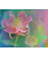 Flower Children Art Photograph 24 x 30 Giclee M... - $150.00