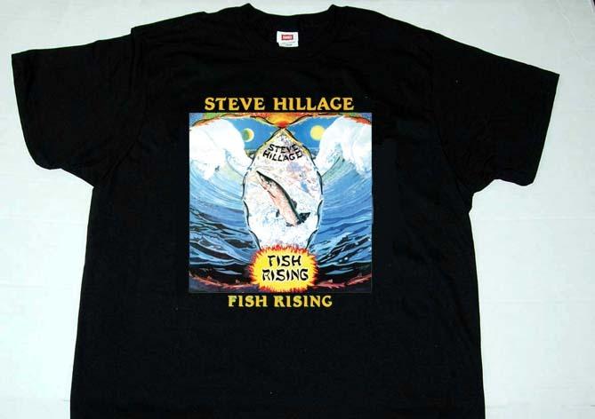 Steve hillage  fish rising