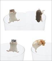 [NEW] All 6 x PUTITTO Hamster gatcha gashapon cup figures set (KITAN Club) - $44.10