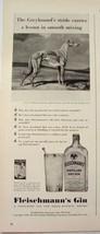 1940 GREYHOUND dog Fleischmann's Gin Print Ad - $9.99